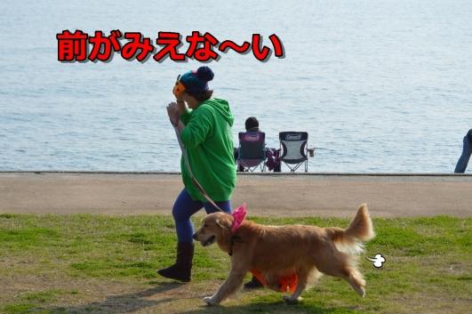 DSC_1308-035.jpg
