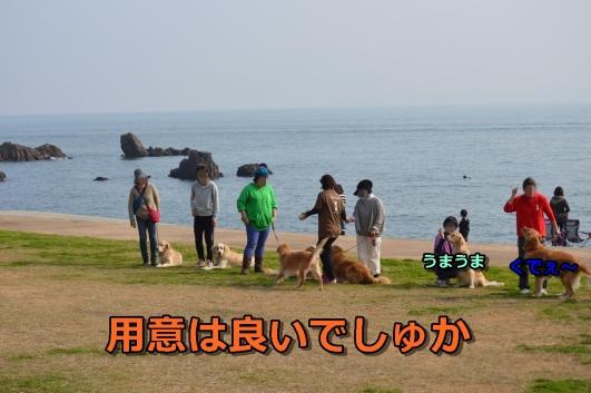 DSC_1376-004.jpg
