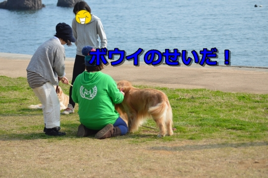 DSC_1394-022.jpg