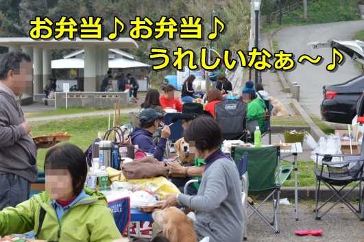 DSC_1422-050.jpg