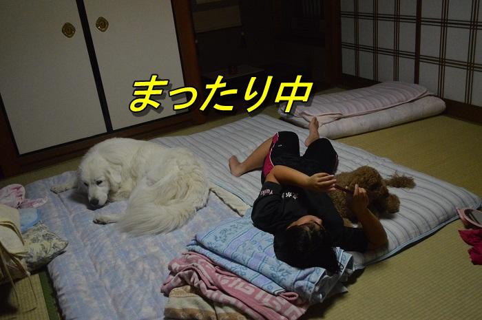 DSC_1497.jpg