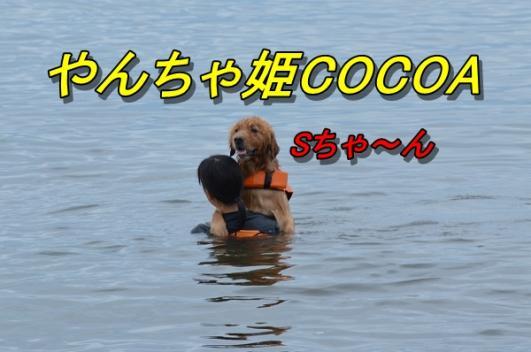 DSC_1645.jpg