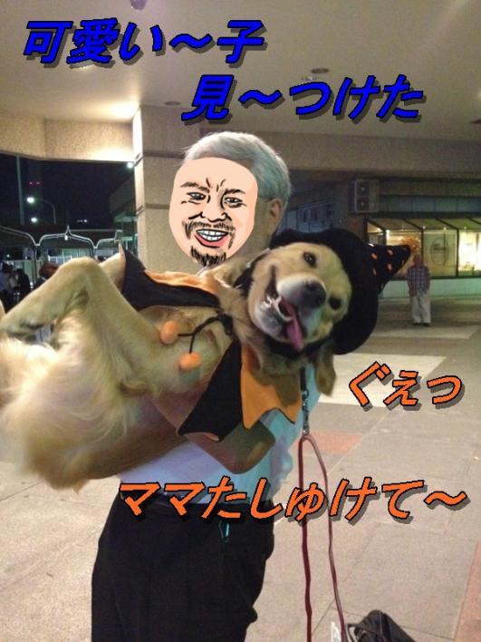 IMG_7292k.jpg