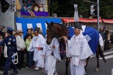 氷川神社 馬  20131019A