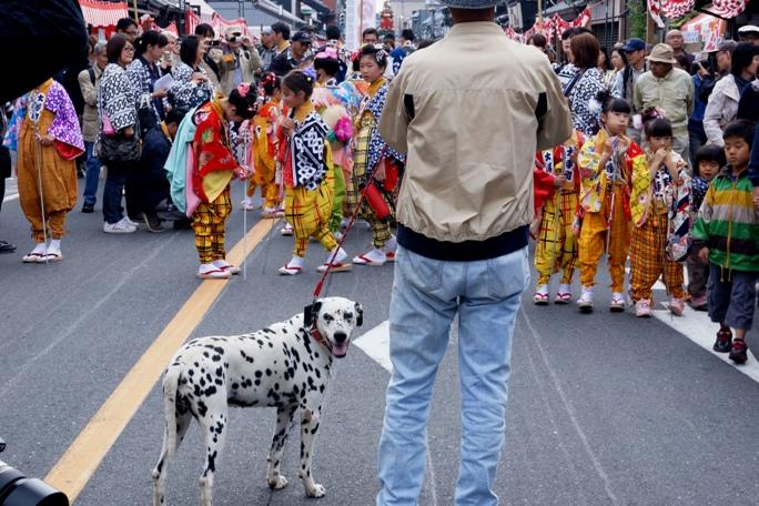 川越祭り 大手町 子供&ダル 20131019A