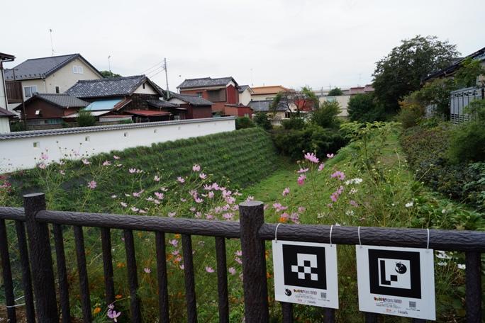 中ノ門堀20131019A2