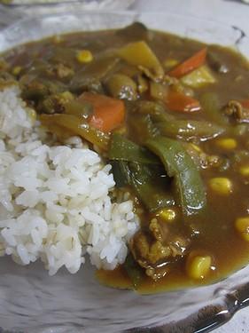 20130920 夏野菜カレー (1)