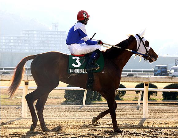福山競馬廃止で川崎に移籍した佐原秀泰騎手(34)、高知に移籍 デビューの地に復帰