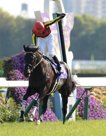 天皇賞馬フェノーメノ年内全休…左前繋靭帯炎発症