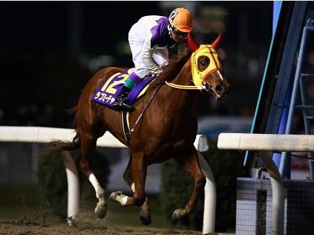 【競馬】JBCスプリントを目指していた笠松の快速牝馬ラブミーチャンが調教中に骨折、現役を引退