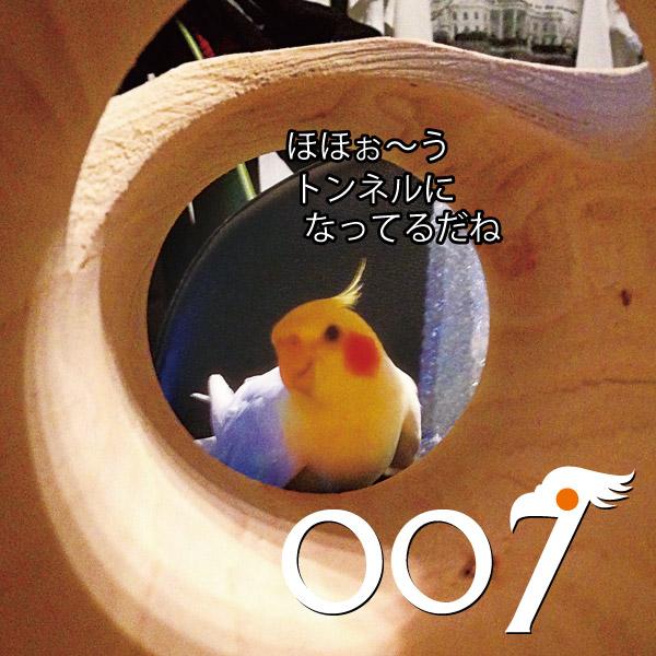 007 まるお 大空のヒットマン