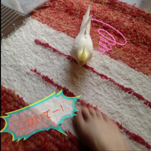 image_20130528183204.jpg