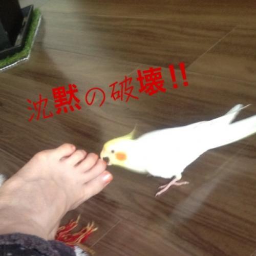 image_20130528183811.jpg