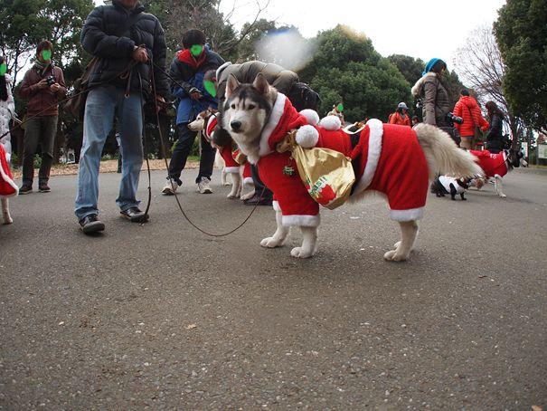 2011.12.25クリスマス