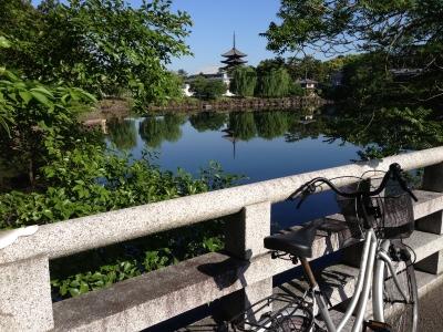 奈良 荒池