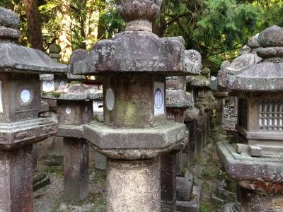 奈良 春日大社 灯籠