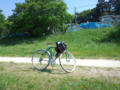 多摩川 緑