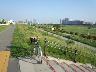 多摩川 サイクリングロード
