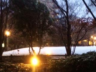 東京で雪積もる by占いとか魔術とか所蔵画像