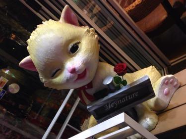 イデで見つけた고양이(猫)