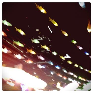 空に舞うお魚達。