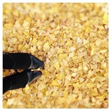 私の足元にも秋が来た。