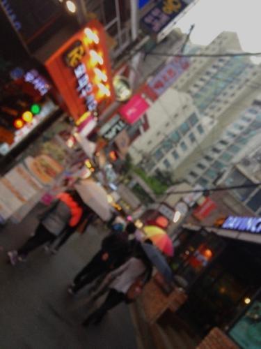 우산의 꽃(傘の花)