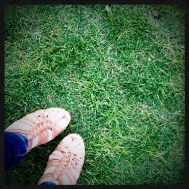 芝の香りを感じながら散歩