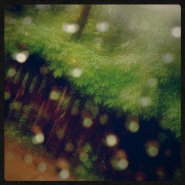 비의 서울 (雨のソウル)