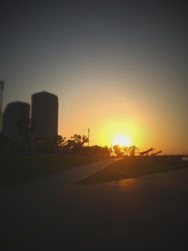 ビルの向こうに沈む太陽