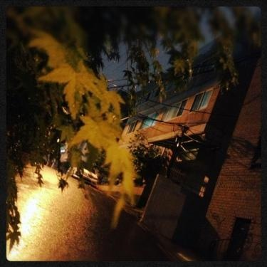 雨のソウル