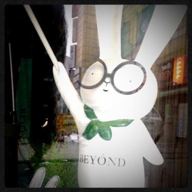 新しく出来たお店で見かけたウサギ。
