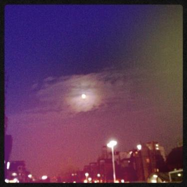 久々に見た綺麗な月の夜
