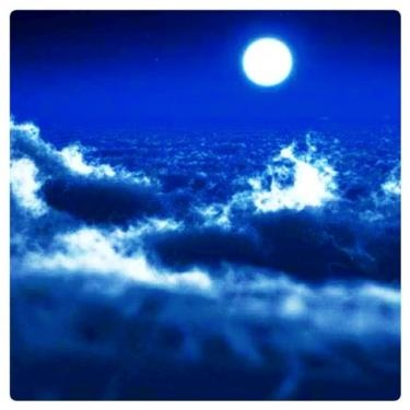月に願いを。