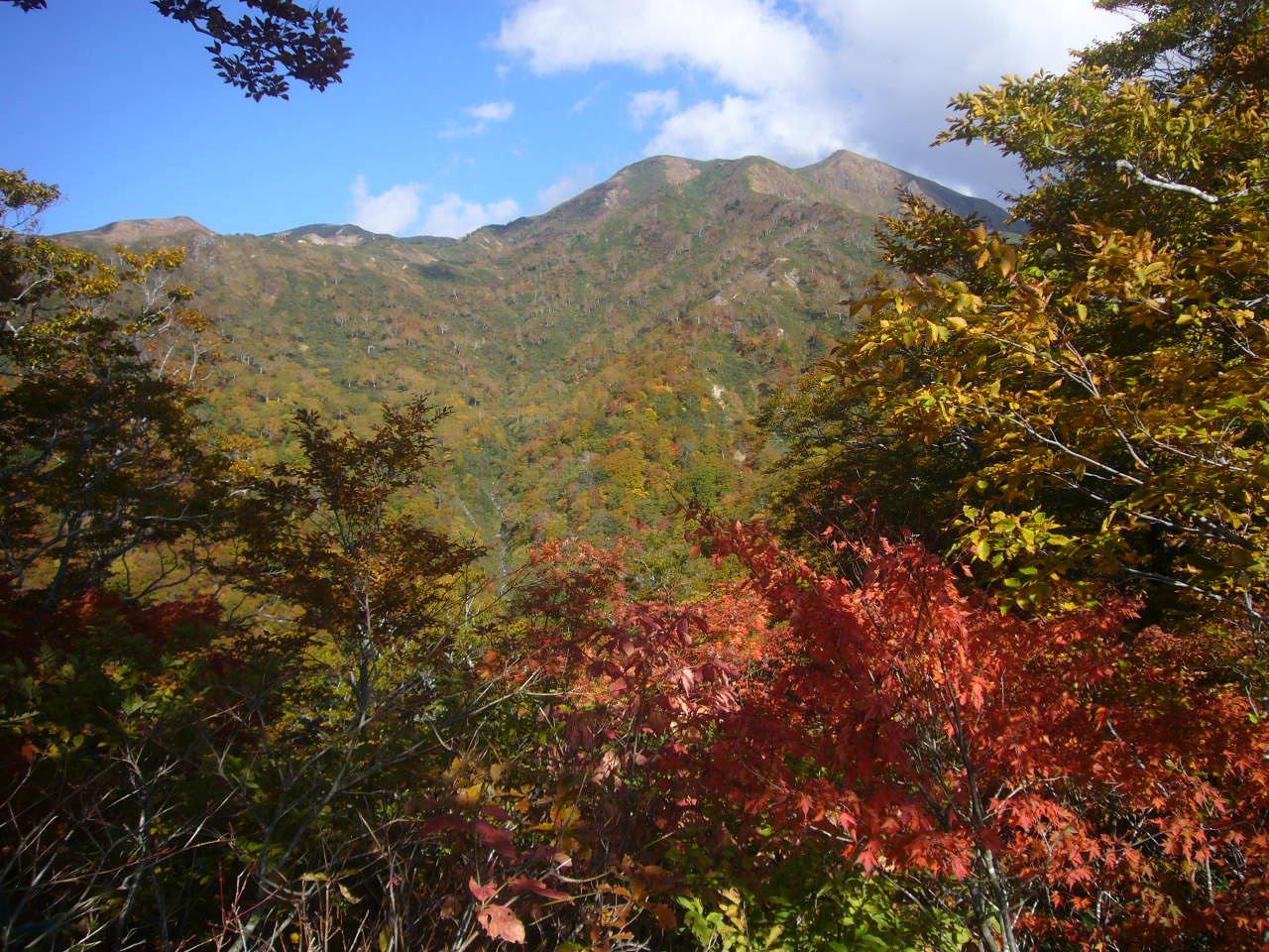 千本檜より三の峰、別山(左奥)H24.10.20