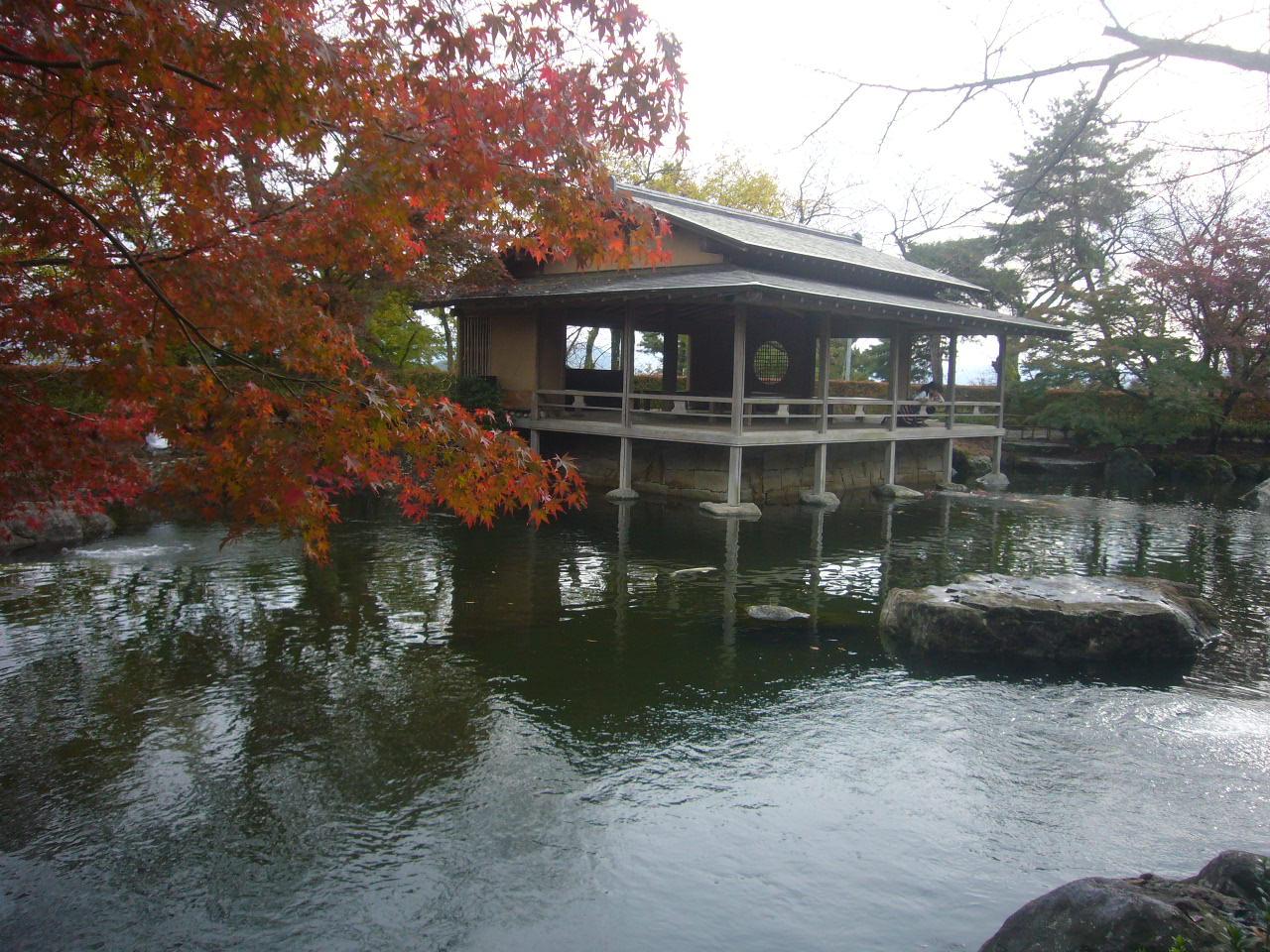 西山公園のモミジ紅葉 H26.11.02撮影