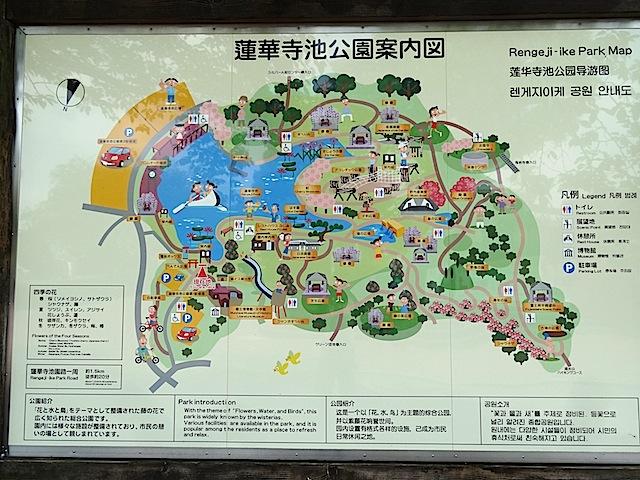 0727蓮華寺池公園1