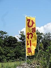 0804ひまわり畑14