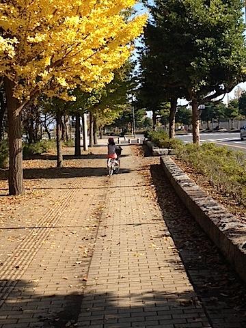 1116サイクリング