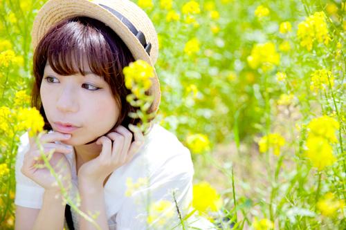 20130512r038kiku500.jpg