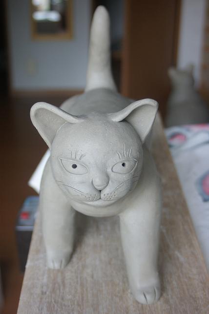 猫5 005