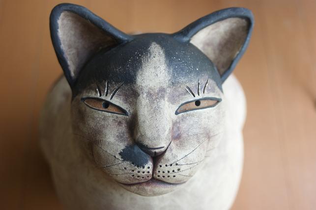 猫5 018