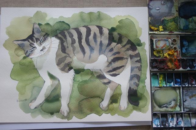 猫5 022