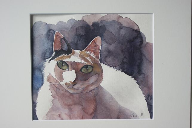 猫5 046