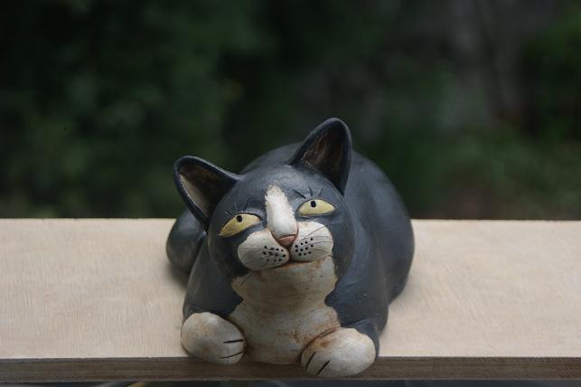 猫5 056