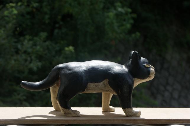 猫5 055