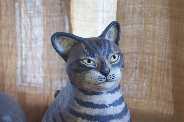 猫5 176