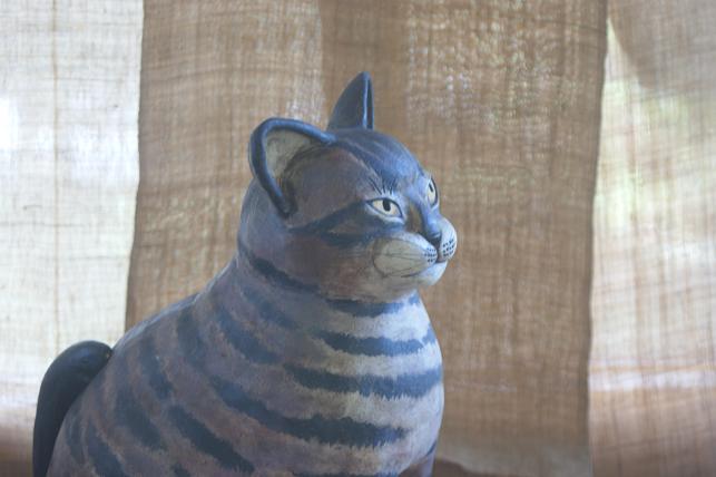 猫5 177