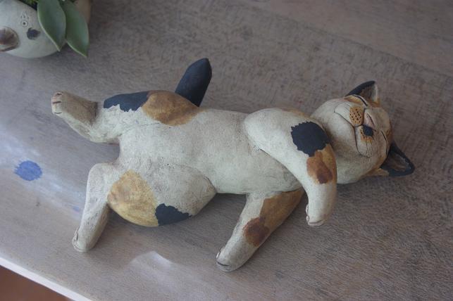 猫5 259