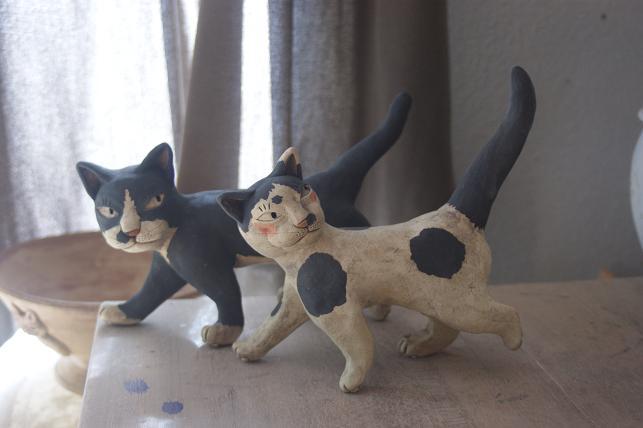 猫5 257